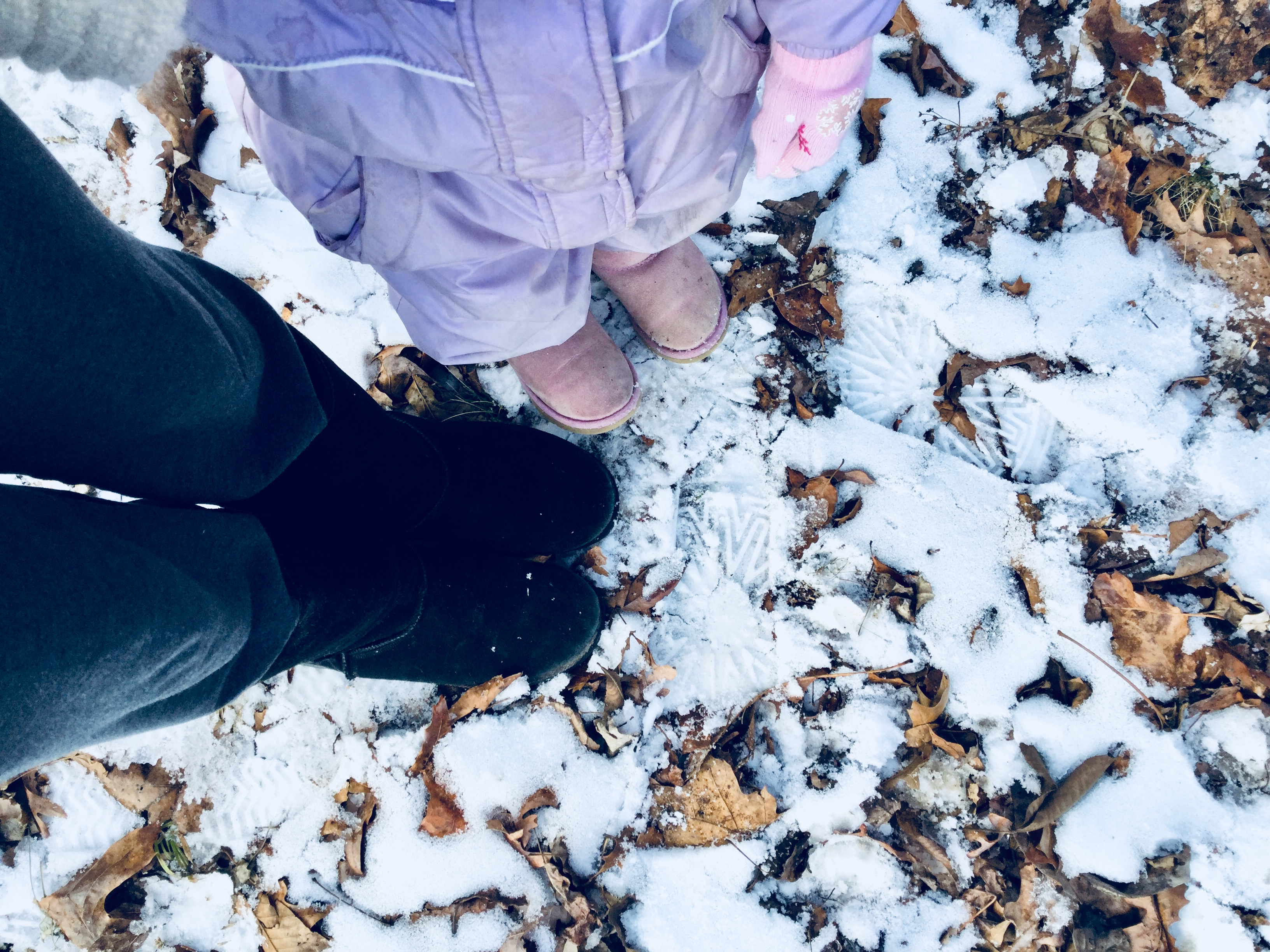 How to Choose Thankfulness in the Midst of Grief – A Winter Walk